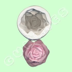 Rosa Grande 2