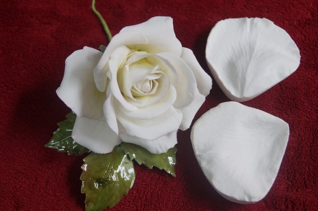 Pétala de Rosa
